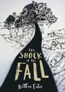 Shock_of_the_fall
